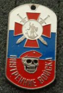 russian dog tag  red beret spetsnaz skull